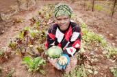globalgrowers_0002